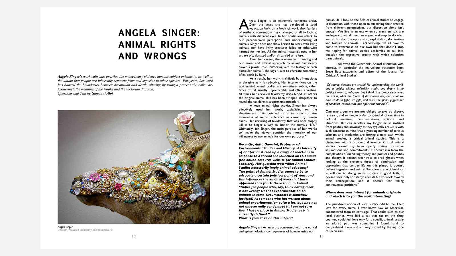 Angela Singer Animal Rights and Wrongs | Angela Singer